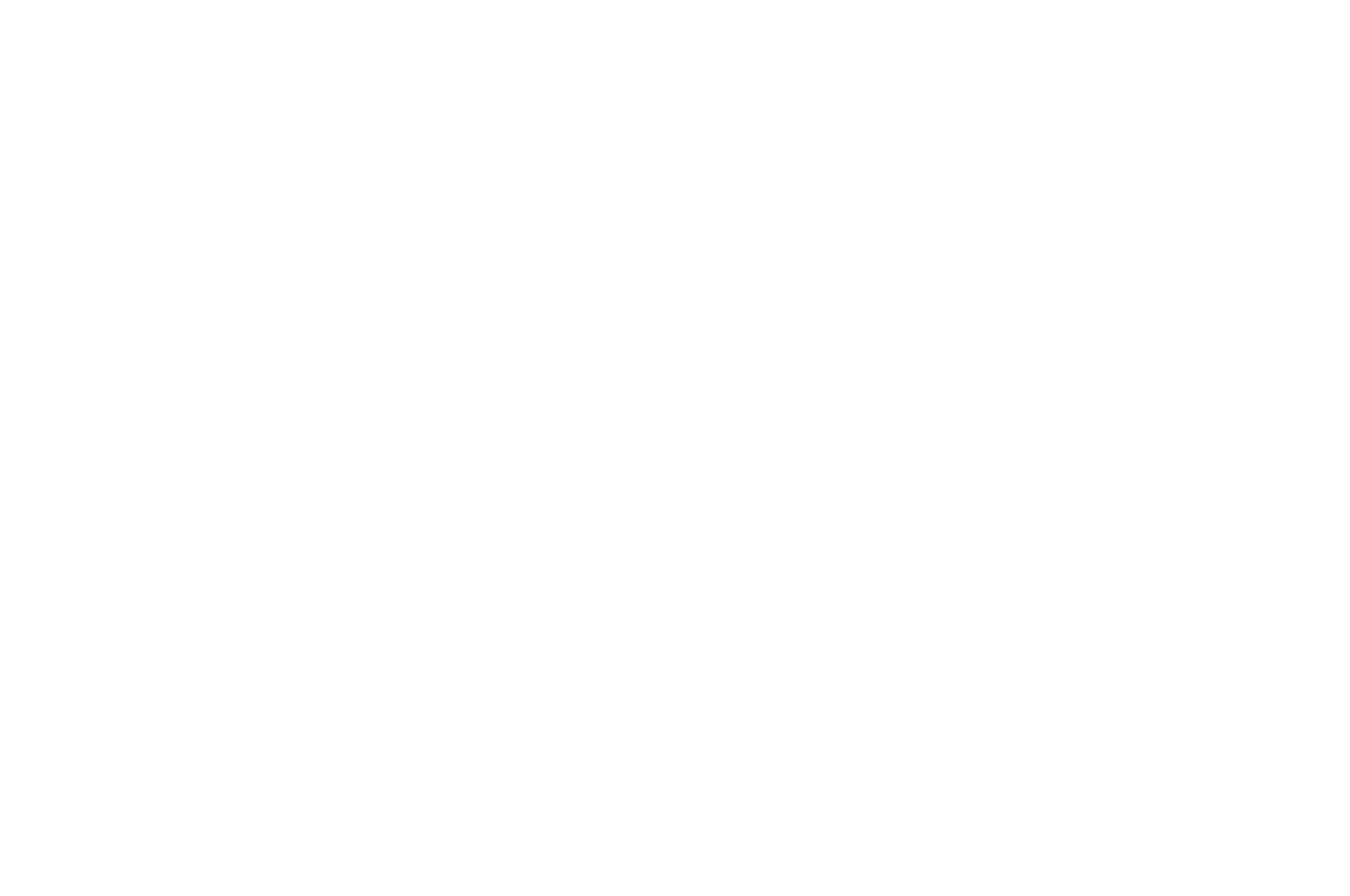 OFFICIAL COMPETITION - SITGES - 2018