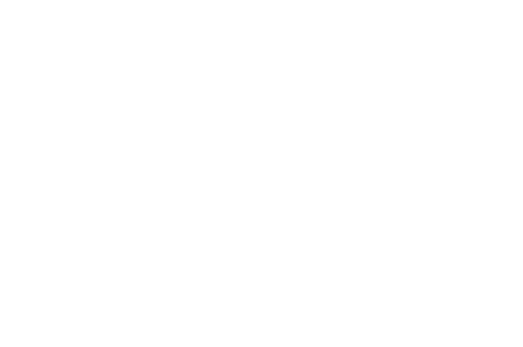 OFFICIAL COMPETITION - FANTASIA - 2018