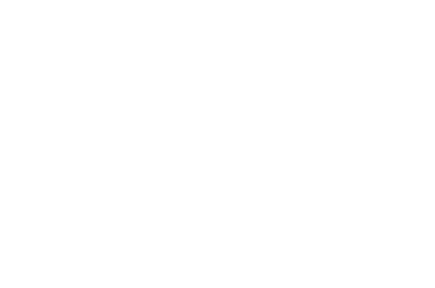 OFFICIAL COMPETITION - BIFAN - 2018